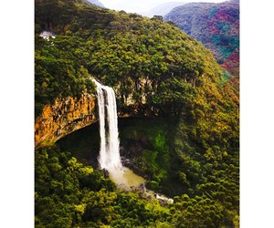 brazil, nature, and view image
