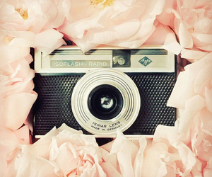 beautiful, pretty, and camera image