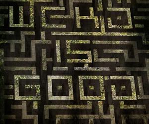 maze runner, the maze runner, and thomas image