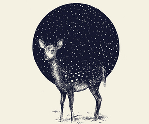 art, deer, and stars image