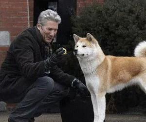 movie, dog, and hachi image