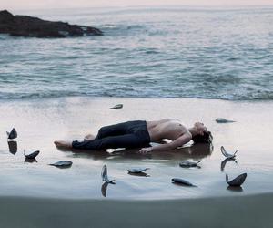 sea, beach, and boy image