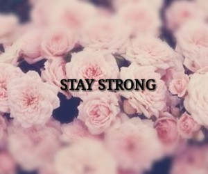 flowers, pink, and stay strong image