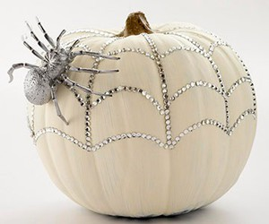 pumpkin, Halloween, and spider image
