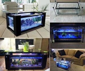 diy and aquarium image