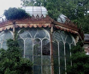 nature, green, and greenhouse image