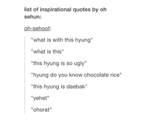 exo, funny, and quotes image