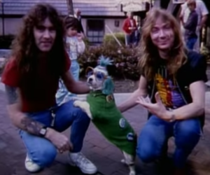 Dave Murray, iron maiden, and steve harris image