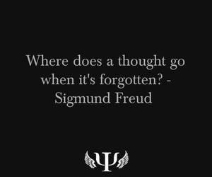 psychology, thought, and freud image