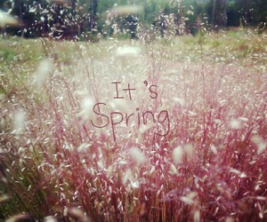 spring and yeees image