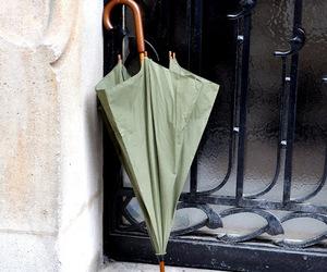 umbrella, autumn, and green image