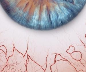 cannabis, drug, and eye image