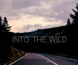 wild, into the wild, and road image