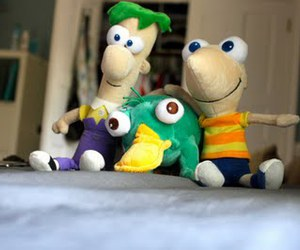 perry, phineas and ferb, and phineas image