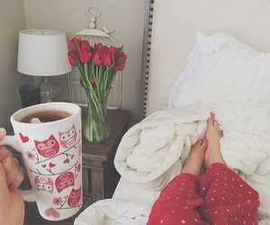 morning, red, and tulips image
