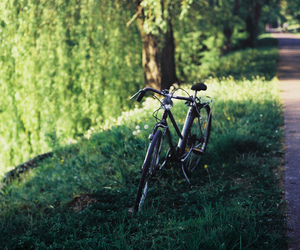 bicycle, bike, and green image