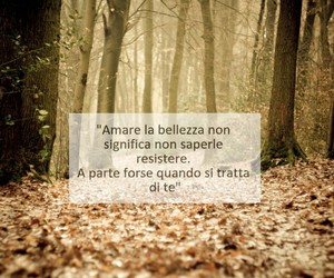 amore, bellezza, and tu image