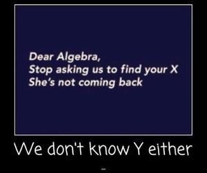 funny, algebra, and math image