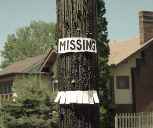 missing and tree image