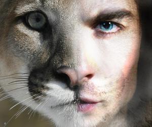 ian somerhalder, ian, and eyes image