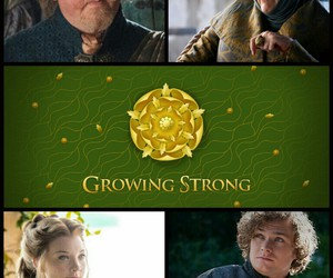 got, game of thrones, and margaery tyrell image