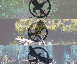 mockingjay, catching fire, and the hunger games image