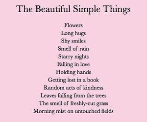 beautiful and simple things image