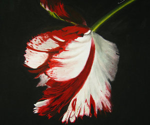 book, book cover, and flower image