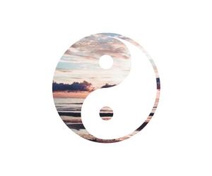 beautiful, yang, and ying image