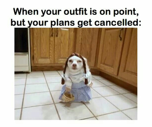 cancelled, plans, and outfit image