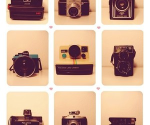 cool, lomography, and camera image