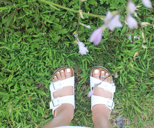 blogger, flowers, and summer image