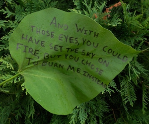 quotes, green, and grunge image