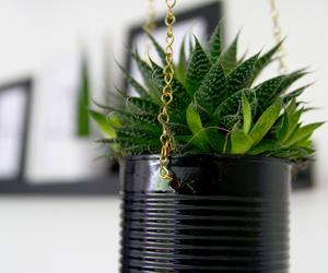 diy, hanging basket, and plant image