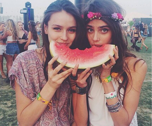 coachella, watermelon, and festival image
