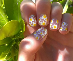 beautiful, style, and daisies image