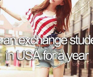 usa, america, and exchange image