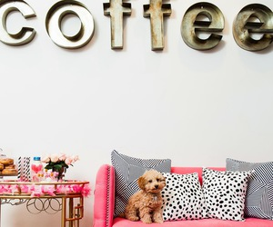 coffee, pink, and room image