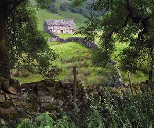 beauty, yorkshire, and nature image