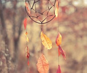 autumn, Dream, and leaves image