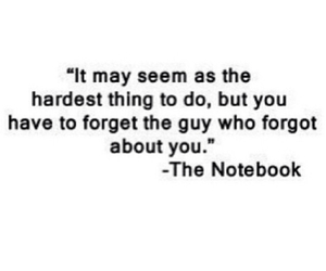 love, forget, and the notebook image