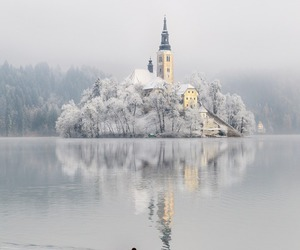 beautiful, snow, and cold image