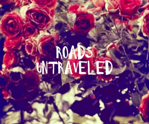 wallpaper, roads, and rose image