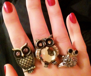 accessoires, gold, and owl image