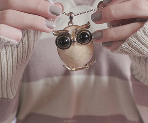 gray, jewelry, and owl image