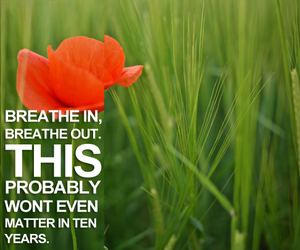 breathe, calm, and flower image