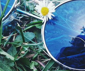 blue, hippie, and flower image