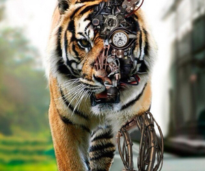 technology, tigers, and tech tiger image