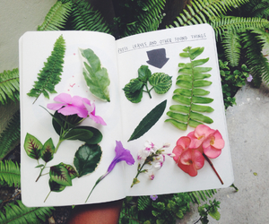 flowers, grunge, and green image