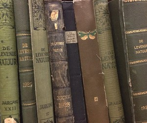 books, green, and wolry image